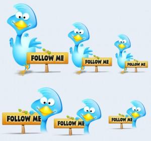 """Twitter Bird"""