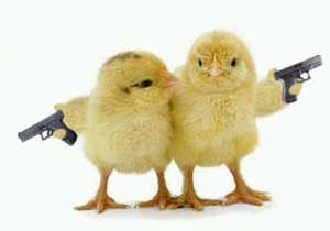 Chicks with Guns