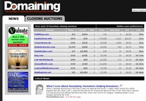 """""""Domaining.com"""""""