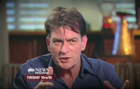 CharlieSheen.com — The case of celebrity domain names and legal disputes