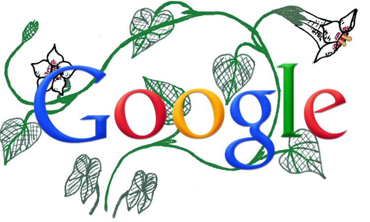 It's official: Google owns Photovine.com